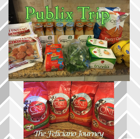Publix Shopping Trip 11/27/15 – OOP $29.83