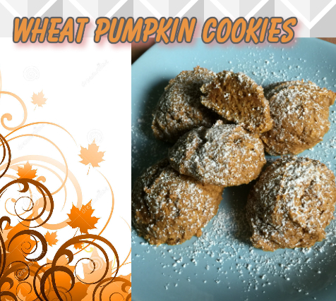 The Feliciano Journey wheat-pumpkin-cookies