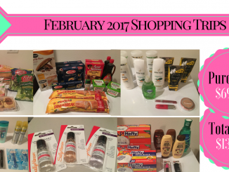 The Feliciano Journey 2017-feb-shopping-trip-total-326x245