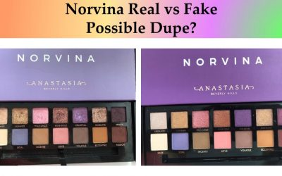 Norvina Eyeshadow Palette Dupe? (Put to the Test Real vs Fake)